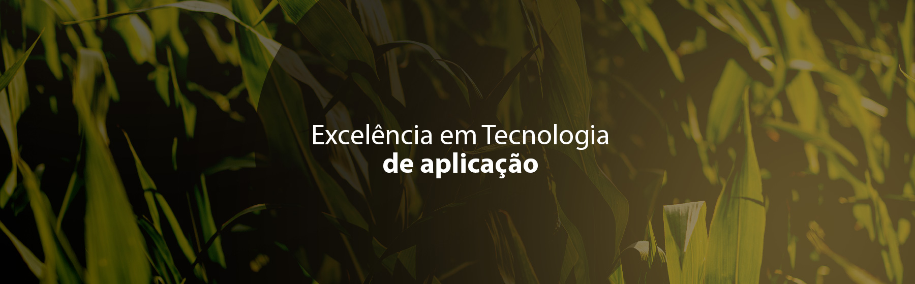 Excelência em Tecnologia de aplicação